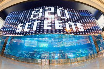 LG OLED Wall