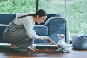 Sony robot köpek Aibo'yu tanıttı